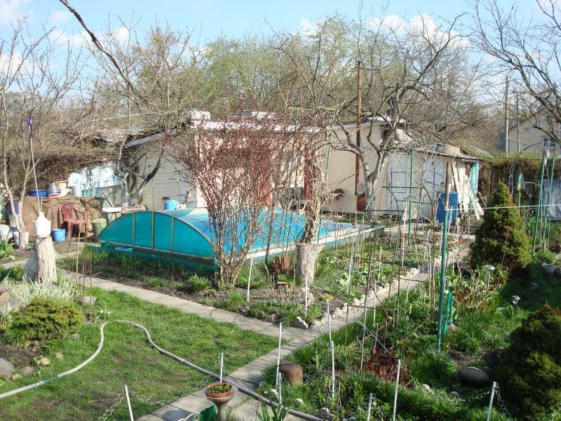 Баня на дровах в Киеве фото сада возле бани