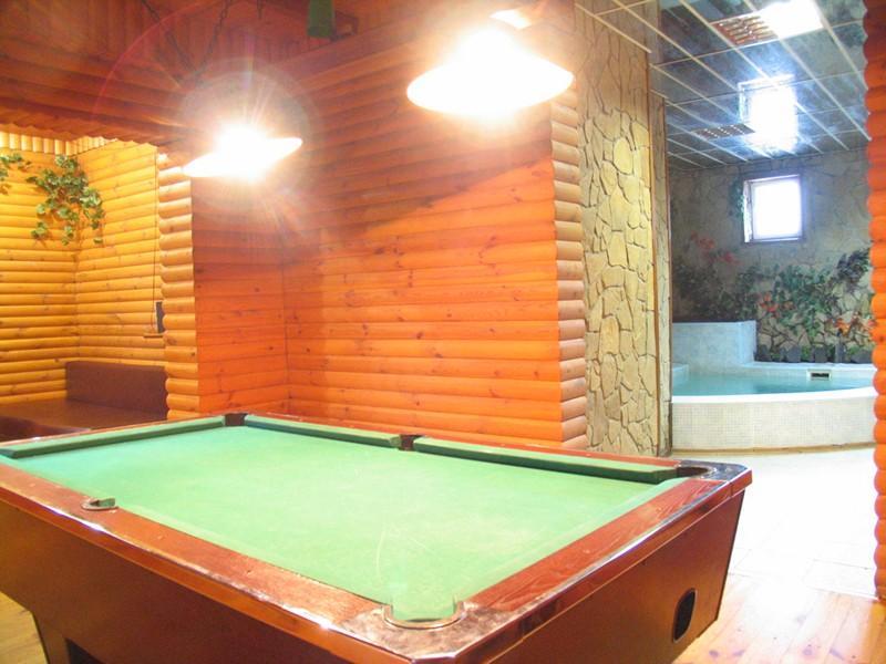 Сауна Лесная фото бильярдной комнаты