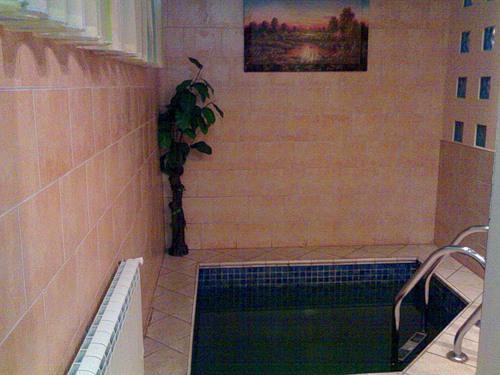 Сауна LUX фото бассейна